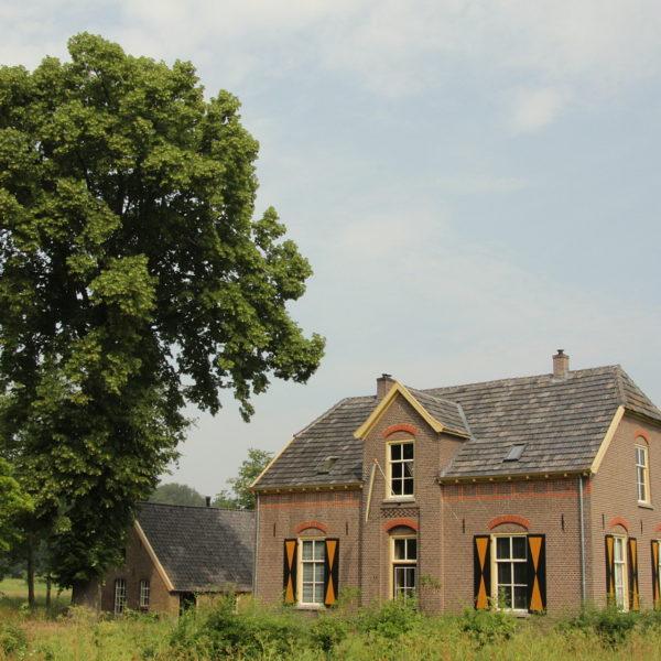 De lindeboom en de boerderij