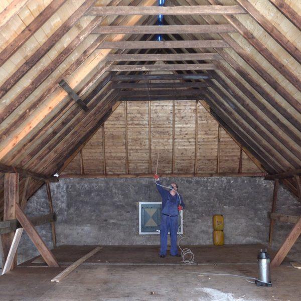 Anti houtwormbehandeling in het achterhuis