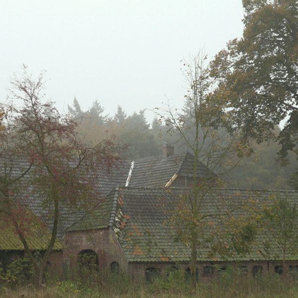De daken van schuren en huis in het landschap.