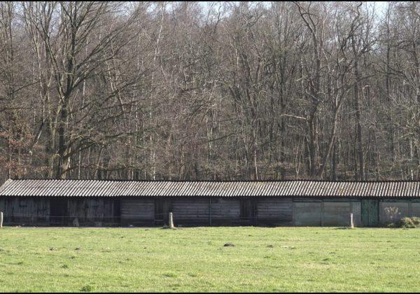 Landelijk Doetinchem bij Hagen.