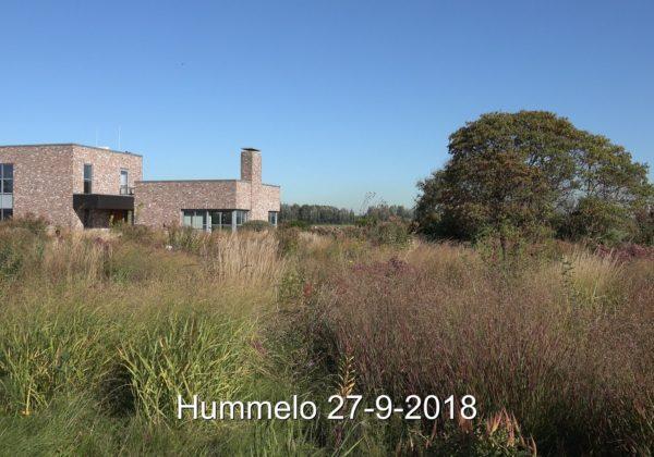 Tuin Oudolf Hummelo