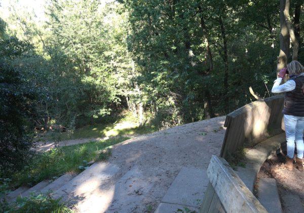 Landgoed Bikbergen bij Crailo