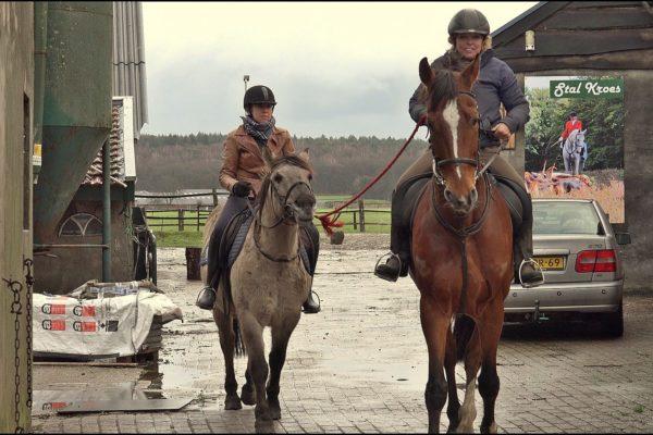 Paardrijles Stal Kroes